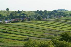 portal rolniczy